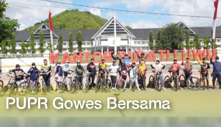 gowes1